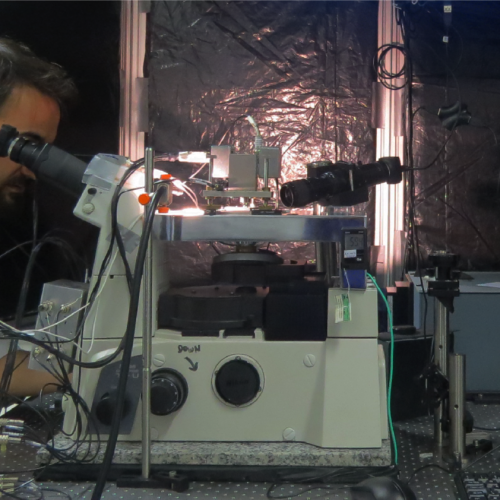 Microscópio Óptico de Campo Próximo (TERS)